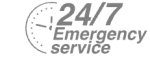 24/7 Emergency Service Pest Control in Great Bookham, Little Bookham, KT23. Call Now! 020 8166 9746