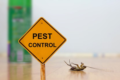 Pest Contol in Great Bookham, Little Bookham, KT23. Call Now 020 8166 9746